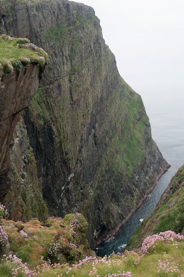 Mingulay-Cliffs.jpg